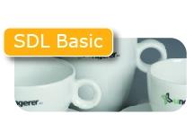 SDL Basic regular servies