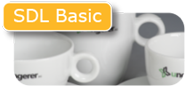 SDL basic servies